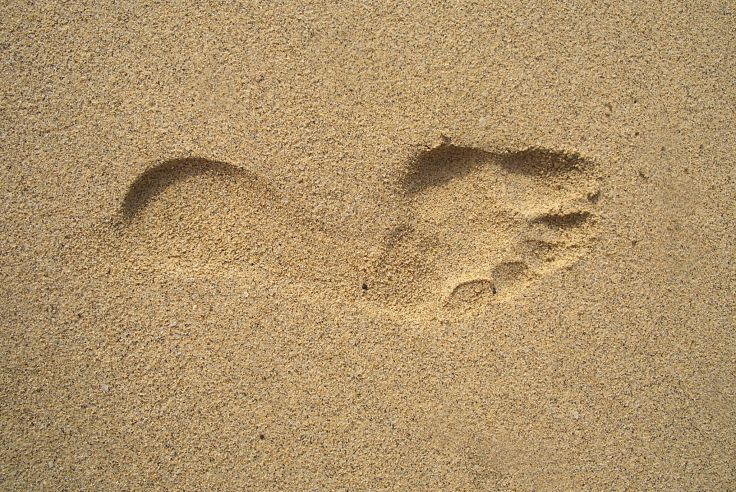 A Soft Tread in Soft Sand>   <figcaption><i>A Soft Tread in Soft Sand <b>Source:</b> Pixabay.com</i></figcaption> </figure>  <p>At first, skelter, pell-mell plunge of foot.<br /> Sinking into ooze, splattering mud about.<br /> Heavy foot - surging, clambering, wanting climax and fruition.<br /> Leaving a footprint trail, bogged in mud.<br /> A legacy of heavy haste.</p>  <p>Tread softly now the rush has quelled.<br /> With steps more measured, gait of purpose.<br /> With no footprints left to scar desire.<br /> With lightness of touch, absorbing rebound.<br /> With steps adroit, patient, poised, balanced.</p>  <p>Time has slowed,<br /> So, tread softly now.</p>  <br><br> <script async src=